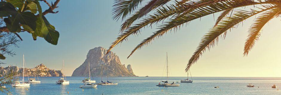 Ibiza, joka sijaitsee Mallorcan kaakkoispuolella, on vehreä saari, jolla on paljon tarjottavaa.