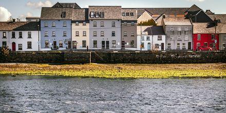 Galway, Irlanti. Boheemi ja pidetty kaupunki!