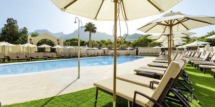 Allasalue, hotelli Isabel. Playa de las Americas, Teneriffa.