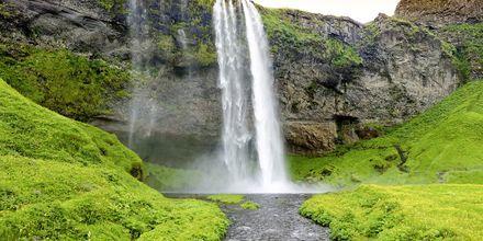 Vesiputous Seljandsfoss, Islanti.