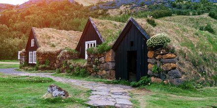 Perinteinen islantilainen talo ruohokatolla.
