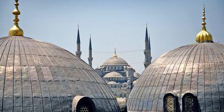 Moskeijoita Istanbulissa.