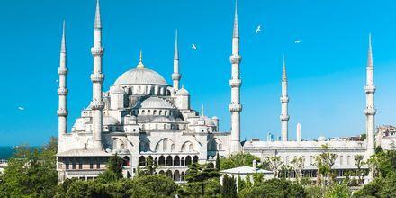 Sininen moskeija Istanbulissa.