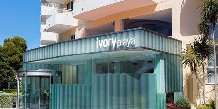 Ivory Playa