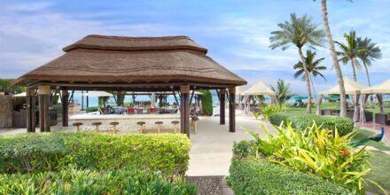 Captain's baari ja ravintola, JA Beach, Dubai, Yhdistyneet Arabiemiirikunnat.