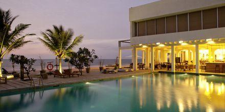 Uima-allas, Hotelli Jetwing Sea. Negombo, Sri Lanka.