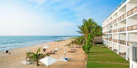Ranta, hotelli Jetwing Sea, Negombo, Sri Lanka.