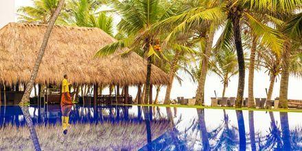 Allas, hotelli Jetwing Sea, Negombo, Sri Lanka.