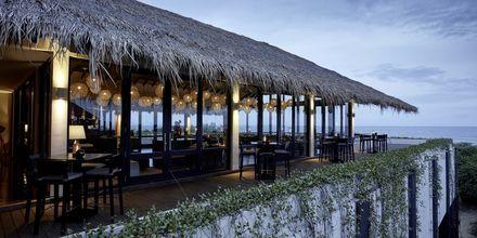 Ravintola, Hotelli Jetwing Yala, Yala, Sri Lanka.