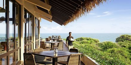 Apollon hotelli Jetwing Yala Sri Lankassa.