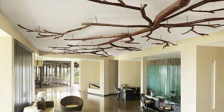 Hotelli Jetwing Yala, Yala, Sri Lanka.