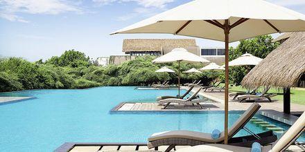 Allas, Hotelli Jetwing Yala, Yala, Sri Lanka.