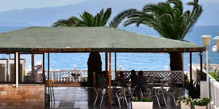 Baari. Hotelli Joni, Saranda, Albania.