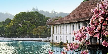 Tempel of the Tooth, Kandy, Sri Lanka.