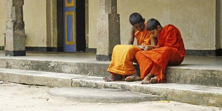 Sri Lankalaisia munkkeja.