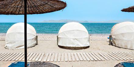 Läheinen ranta, Hotelli Kipriotis Aqualand, Psalidi, Kos.