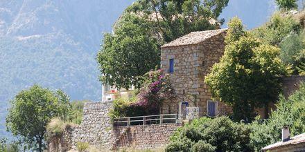 Ota, Korsika.