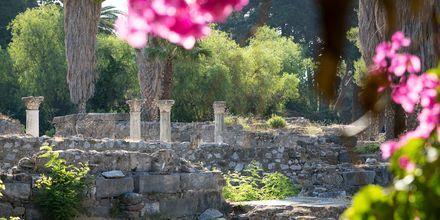 Asklepion-temppeli on Kosin tärkein arkeologinen kohde.