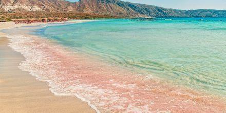 Tunnettu Elafonissin ranta Kreetalla, jossa hiekka on roosan väristä.