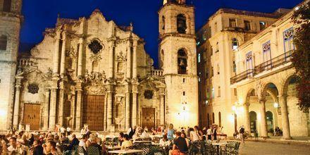 Ravintola katedraalin vieressä, Havanna