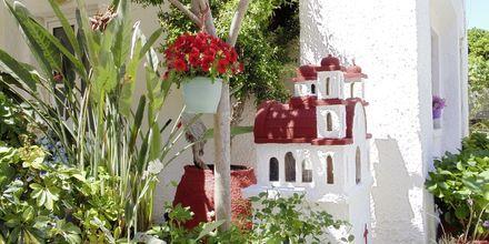 Hotelli Kydonia, Kreeta, Kreikka.