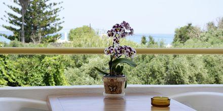Pienehkö kaksio. Hotelli Kydonia, Kreeta, Kreikka.
