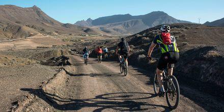 Pyöräilyä Fuerteventuralla.