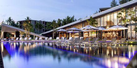 Allasalue. Hotelli La Vela Khao Lak, Thaimaa.