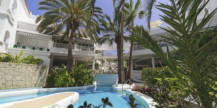 Allas. Hotelli Lagos de Fañabé, Playa de las Americaksen lähellä, Teneriffa.