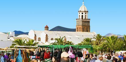 Lanzarote - Tegusien markkinat