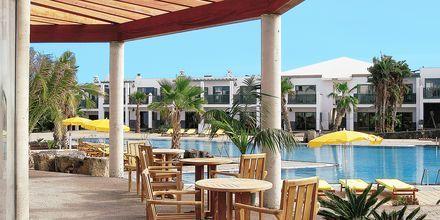 Allasravintola, Hotelli Las Marismas, Fuerteventura.