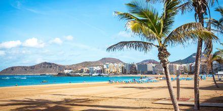 Las Canterasin hiekkaranta, Las Palmas.