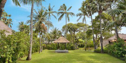 Puutarha, hotelli Legian Beach. Kuta, Bali.