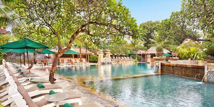 Allas, hotelli Legian Beach. Kuta, Bali.