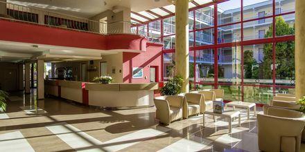 Vastaanotto, hotelli Longoza.
