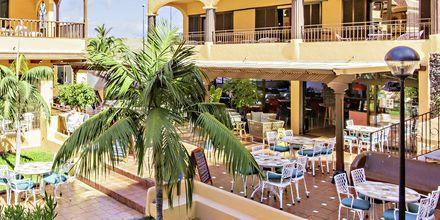 Kahvila/baari, Los Alisios, Los Cristianos, Teneriffa.