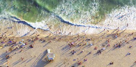 Nauti Los Angelesin lämpimästä ilmastosta kaupungin rannoilla.