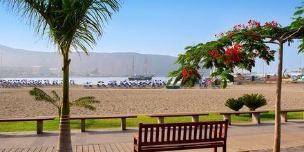 Los Cristianoksen kaunis rantakatu.