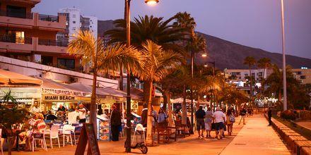 Los Cristianos ilta-aikaan, Teneriffa, Kanariansaaret.