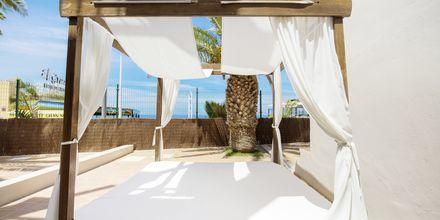 Hotelli Los Olivos Beach Resort, Playa de las Americas.