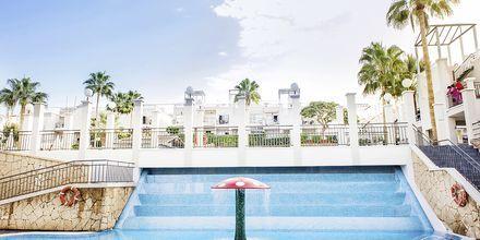 Allasalue. Hotelli Los Olivos Beach Resort, Playa de las Americas.