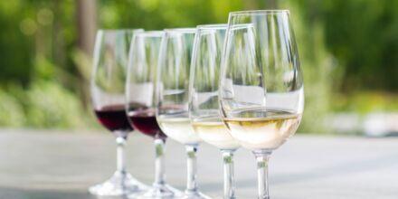 Dating viinin maistelua