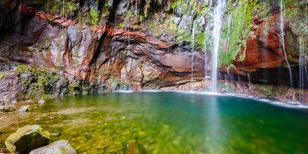 Vesiputous vaellusreitin varrella, Madeira, Portugali.