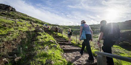 Saarella on uskomattomat vaellusmahdollisuudet, Funchal, Madeira.