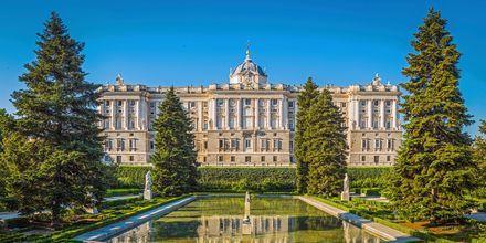 Mardidin kuninkaan linna on nimeltään Palacio Real de Madrid, ja se on yksi maailman koristelluimmista linnoista.