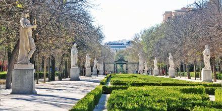 Paseo de las Estatuas on täynnä entisten kuninkaiden patsaita, ja se sijaitsee Retiro Parkissa.