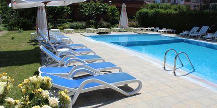 Allas, hotelli Magnolia. Sunny Beach, Bulgaria.