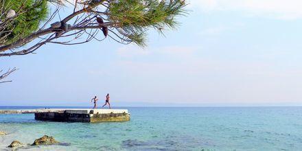 Makarskan Riviera