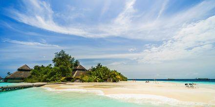 Malediivit Piipahdus Paratiisissa Matkat Apollomatkoilta