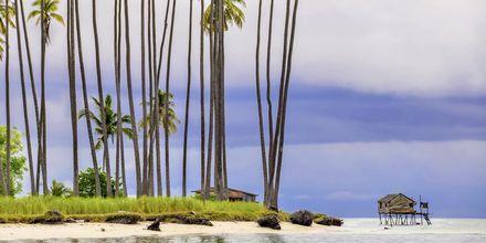 Maiga Island sijaitsee Sempornan kaupungin ulkopuolella, ja on oikea trooppinen paratiisi Malesiassa.